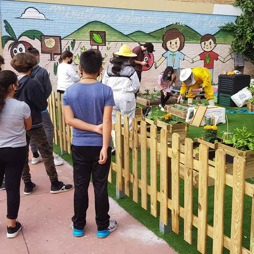 huerto escolar del colegio Miraflores