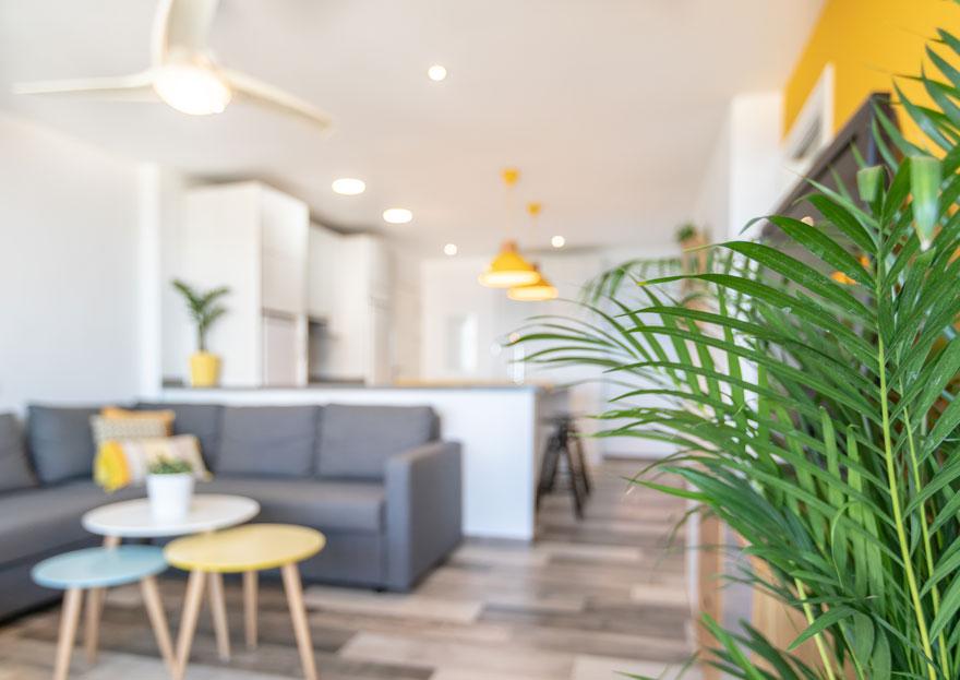 interiorismo de apartamento con vegetación