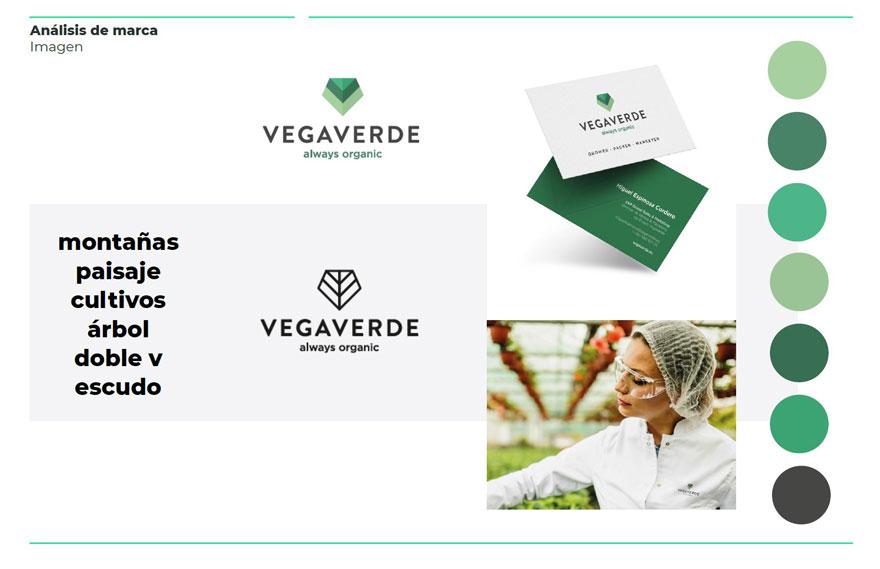 Vegaverde brand analysis